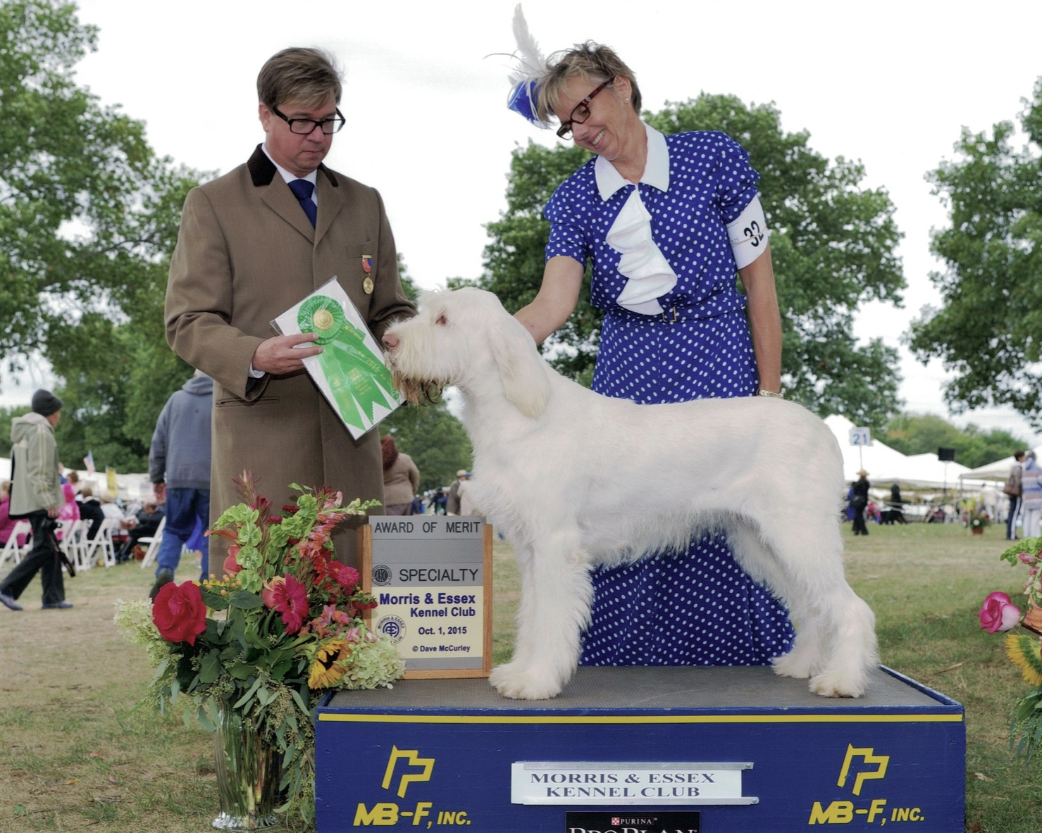 Lela successful in the show ring